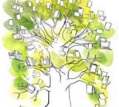 Bibliotheques Vertes De L Ecologie Au Developpement